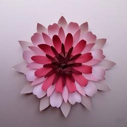 Au Detour du Papier - lotus 3D