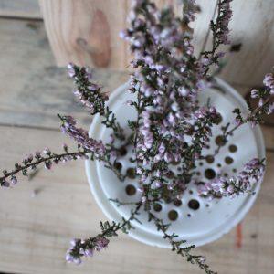 Pique-fleurs taille moyenne